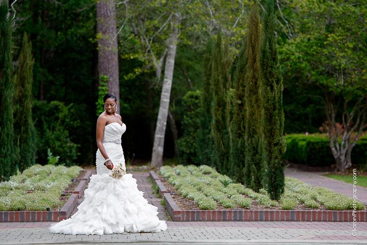 C. Baron Photography, Houston Wedding Photographer, bridals, gardens, elegant, maze, flowers, spring