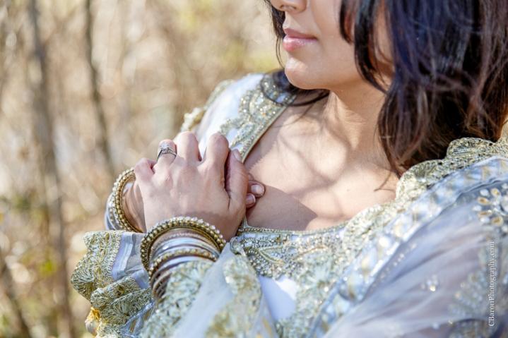 C. Baron Photography, Sugar Land Wedding Photographer, Sugarland Wedding Photogrpher, Oyster Creek Park, winter, sari, gold, BAPS Swaminarayan Sanstha, South Asian