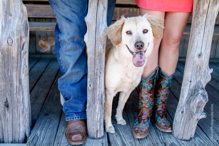 C. Baron Photography, Houston Engagement Photographer, College Station, Texas, Aggie, TAMU, 2014, Century Tree, couple, Dixie Chicken, dog, boots