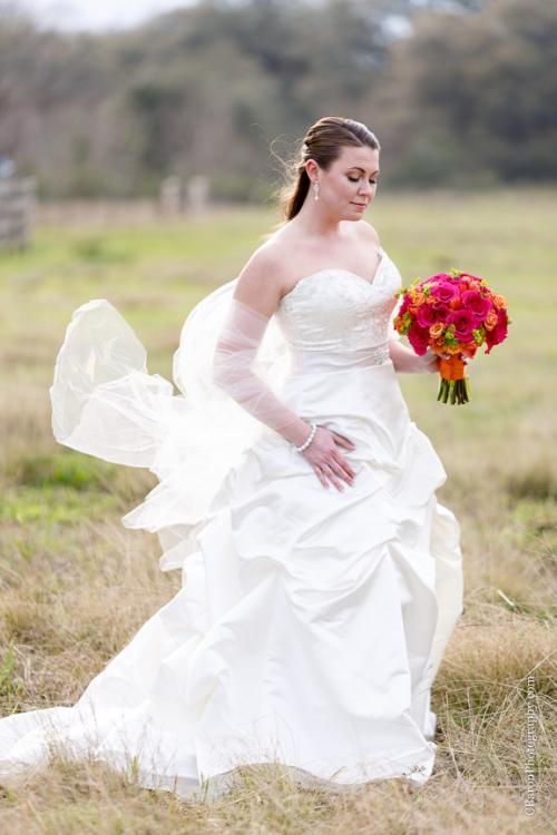 C baron photography houston wedding photographer for Wedding photographer under 500