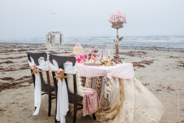 C-Baron-Photo-Galveston Wedding- Lisa Marie-Travis-147