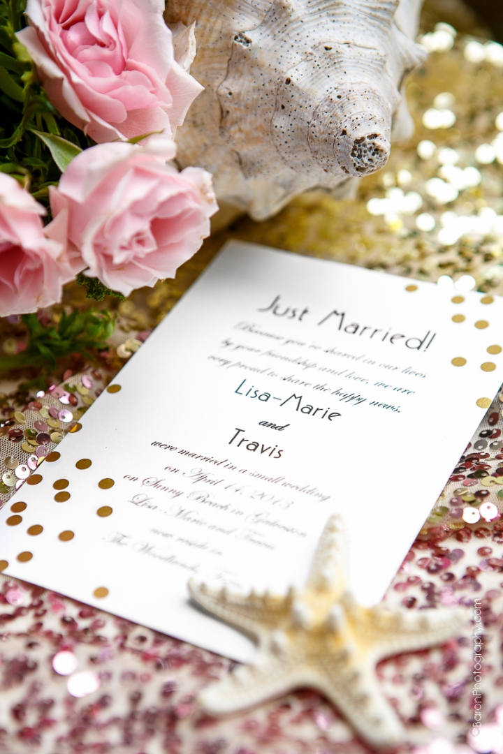 C-Baron-Photo-Galveston Wedding- Lisa Marie-Travis-160