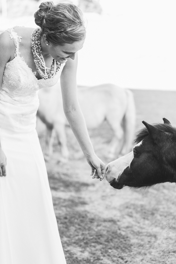 C. Baron Photography, Houston Wedding Photographer, Conroe Wedding Photographer, country, girl scout, horse, red barn, summer, stylish, illusion neckline, shetland pony, Alfred Angelo