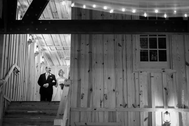Beach; Blue; C. Baron Photography; Coral; Springs Events; Houston Wedding Photographer; Strapless; Houston Wedding Photography; Magnolia; Rain; Spring; 2015; Sunset; Texas; Turquoise; Woodlands Wedding Photographer; beaded; ceremony; crystal Springs; lace; outdoors; pine trees; reception; rustic; seashells; unity cross;