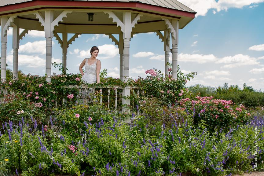 Mattie\'s Bridals   Garden   Houston Wedding Photographer – Houston ...