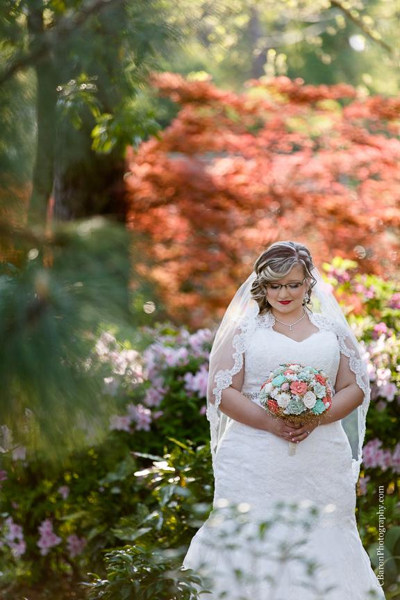 Bog; Bridals; C. Baron Photography; Garden; Houston Wedding Photographer; Outdoor; Spring; Sunset; Swamp; Texas; cypress; formals; lace; nature;