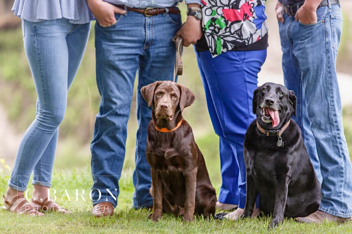 Black Lab; C. Baorn Photography; Chocolate Lab; Creek; Family Portraits; Houston Lifestyle Photographer; Labrador; Outdoors; Portrait Photographer; TEenagers;