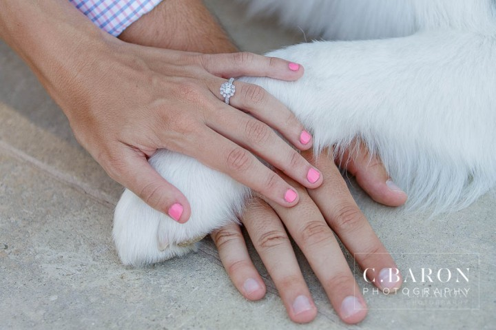 Engagement; Engagement session; herman park; houston; Downtown Houston; Houston Texas; Houston Photographer; Houston Engagement Photographer; Houston Wedding PHotographer; Houston Wedding Photography; cBaron; Dog;