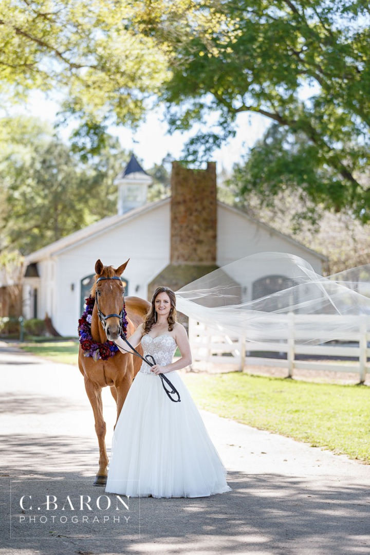 Bridals; C. Baron Photography; Dressage horse; Formals; Houston wedding Photographer; Princess Gown; Spring; Stables; Texas; Tomball; Woodlands Wedding Photographer; horse;