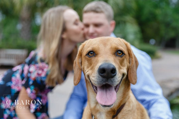 C. Baron Photography; Dog; Engagement session; Fur Baby; Houston Engagement Photographer; Nature; Park; Spring; Swamp; Woodlands Engagement Photographer;